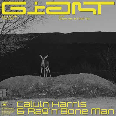 Calvin Harris feat. Rag'n'Bone Man - Giant (ab 11.01.2019)